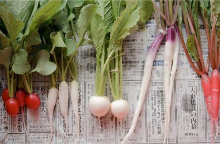 野菜集合画像